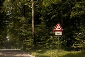 Wildunfall vermeiden – dieses Verkehrsschild deutet auf die Gefahr durch Wildwechsel hin