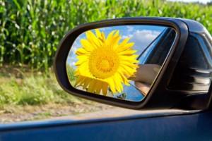 Sonnenblume im Autorückspiegel steht für umweltfreundliches fahren und Sprit sparen