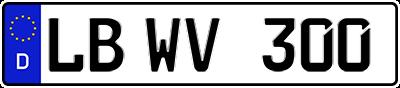lb-wv-300