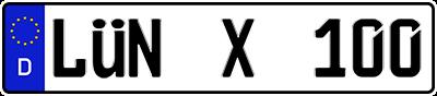 luen-x-100